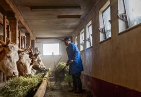 L'agriculture, un secteur abandonné par les pouvoirs publics. GETTY IMAGES/PIDJOE